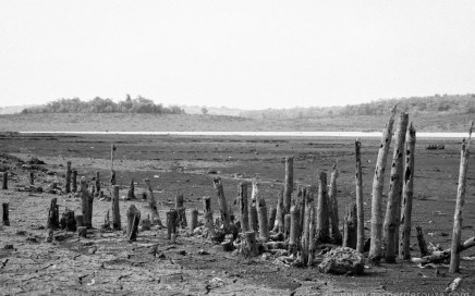 But every summer the area transforms into a surreal landscape as the waters in the catchment area recede to reveal stumps of trees long dead and broken mud and stone walls of the old village houses. This is when displaced villagers make their way to the site of their old homesteads for reasons of nostalgia - remembering the past. At one elevated region, the old Christian chapel stands defiantly with the cross atop. The old Portuguese era road runs through the barren desert-like land until it hits the waters.