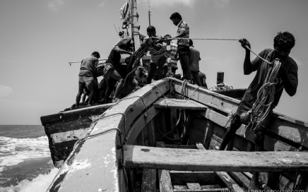Fishermen prepare the little support vessel on board the pursesiener - Santa Catharine as they prepare to cast the nets, off the Goa coast at Betul.